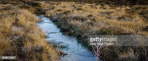 panoramic view of ditch amidst grassy field - ditch stock photos and pictures