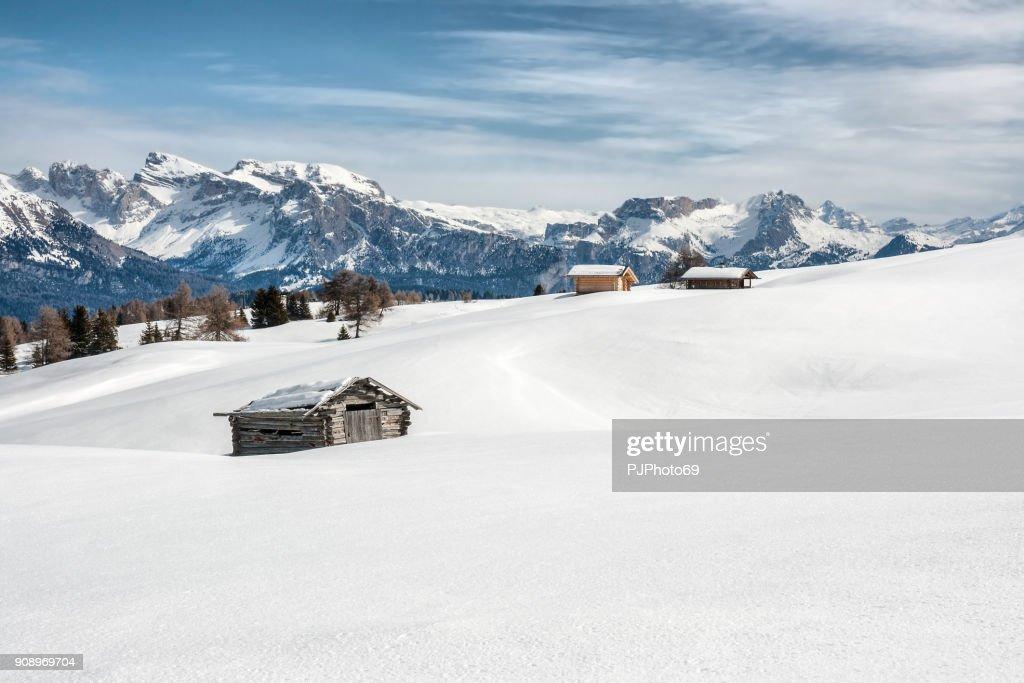 Panoramic view of Dolomiti in Seiser Alm : Foto stock
