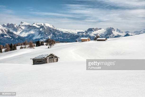 Panoramic view of Dolomiti in Seiser Alm