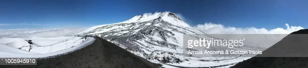 panoramic view of etna volcano. sicily, italy - mt. etna - fotografias e filmes do acervo