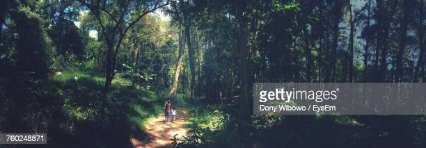 Panoramic View Of Family Walking In Forest