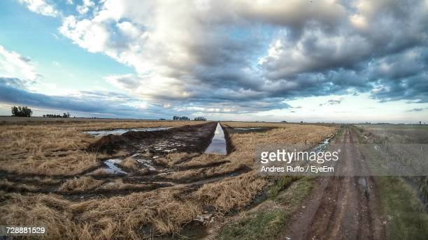 panoramic view of field against sky - andres ruffo stock pictures, royalty-free photos & images