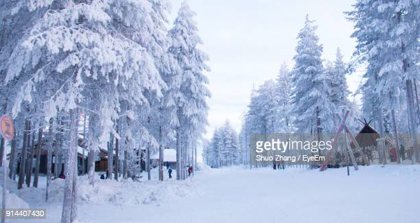 Panoramic View Of Frozen Trees Against Sky During Winter