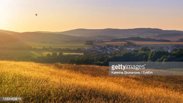panoramic view of golden grass, countryside and sun setting over rolling hills - golden hour stock pictures, royalty-free photos & images