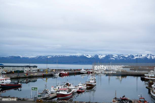 panoramic view of húsavík harbor with snowcapped mountains in the back, northern iceland - husavik stock photos and pictures