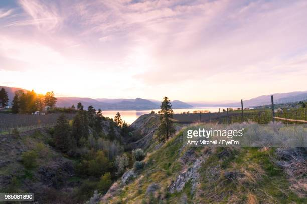 panoramic view of landscape against sky during sunset - thompson okanagan region british columbia stock pictures, royalty-free photos & images