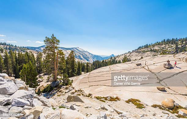 Panoramic View Of Mountains In Yosemite National Park