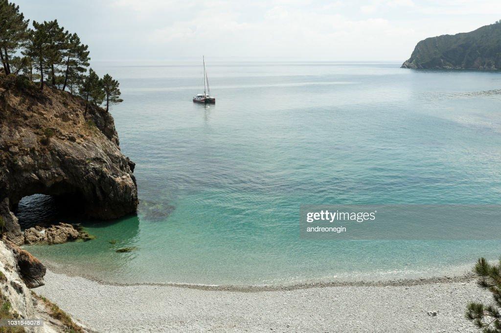 Vue panoramique sur l'océan Pacifique bleu eau transparente, un sport blanc moderne luxueux yacht voile bateau flottant et un rivage vert forêt, collines. Vacances de la course de l'eau et de la voile. : Photo