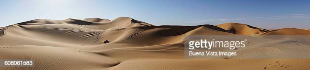 Panoramic view of sand dunes in a desert