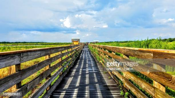 panoramic view of state park against blue sky - florida us state stock pictures, royalty-free photos & images