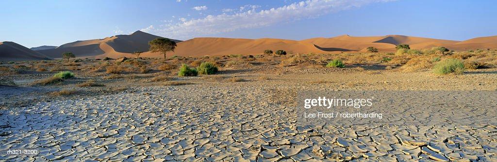 Panoramic view of sun-baked pan of cracked mud near Sossusvlei, Sesriem, Namib Naukluft Park, Namibia, Africa : Stockfoto