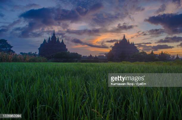 panoramic view of temple on field against sky - yogyakarta stock pictures, royalty-free photos & images