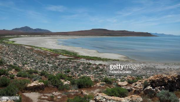 panoramic view of the great salt lake from antelope island state park - great salt lake stock pictures, royalty-free photos & images