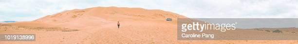 Panoramic view of the Khongoryn Els sand dunes in the Gobi desert in Mongolia.