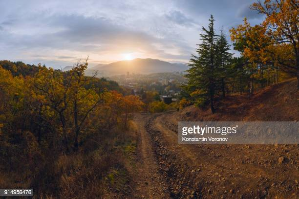 Panoramic view of the small town from the hill. Park trees in the foreground. Landscape with the sun. Sunset, evening.