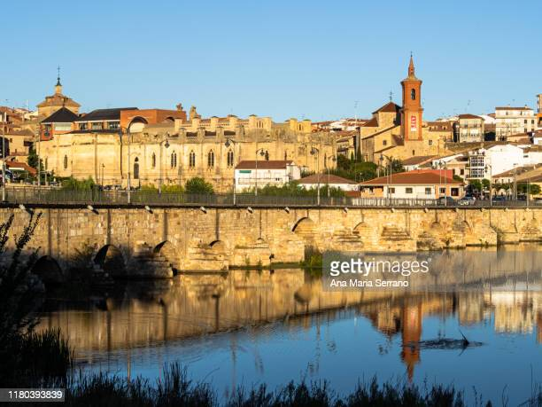 panoramic view of the town of alba de tormes in salamanca, spain against a clear sky, on the banks of the tormes river with the church of san pedro and the medieval bridge - castilla leon fotografías e imágenes de stock