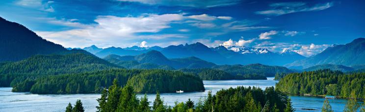 Panoramic view of Tofino, Vancouver Island, Canada 134349863