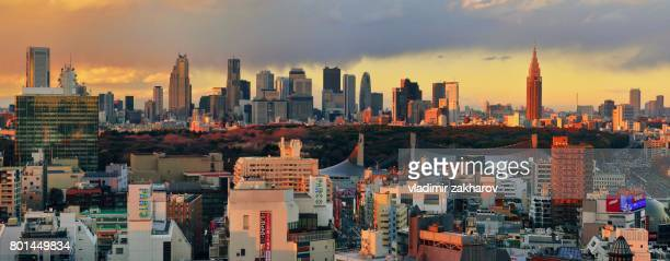 panoramic view of tokyo at sunset - yoyogi tokyo stock photos and pictures