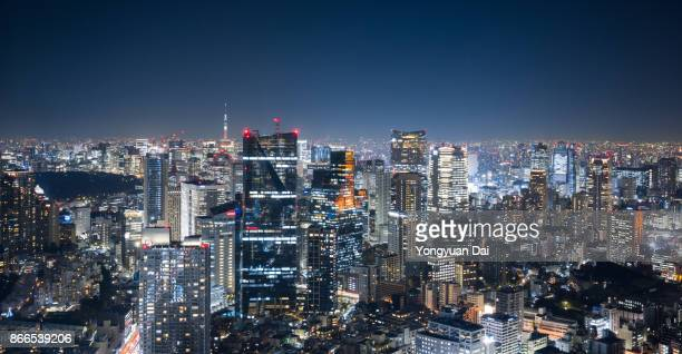 Panoramic View of Tokyo Skyscrapers at Night