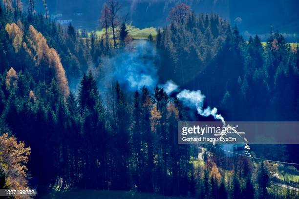 panoramic view of trees and building with smoking roof - gerhard hagn stock-fotos und bilder