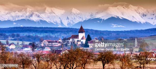 panoramic view of trees and buildings against sky during winter - sibiu stock photos and pictures