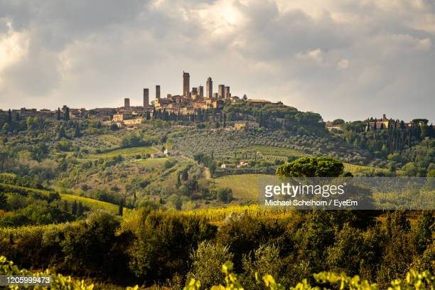 panoramic view of trees and buildings of medieval tuscan town san gimignano, italy, against sky - サンジミニャーノ ストックフォトと画像