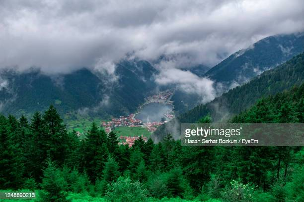 panoramic view of trees and mountains against sky. landscape in uzungol, turkey - トラブゾン ストックフォトと画像