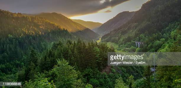 panoramic view of trees and mountains against sky - schwarzwald stock-fotos und bilder