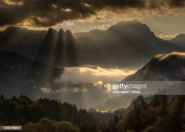 panoramic view of trees and mountains against sky - andy dauer stock pictures, royalty-free photos & images