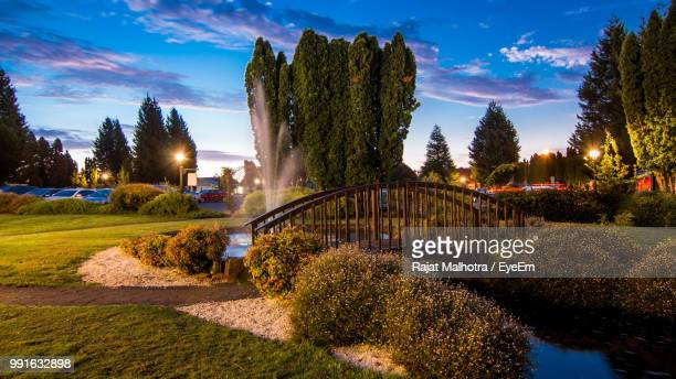 panoramic view of trees by lake against sky during sunset - launceston australien stock-fotos und bilder