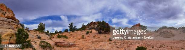 panoramic view of trees on landscape against cloudy sky - st. george utah stock pictures, royalty-free photos & images