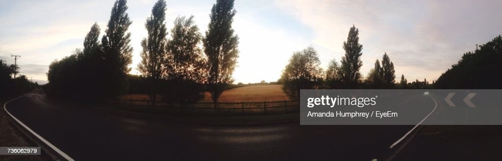Panoramic View Of Trees On Road Against Sky : Stock Photo