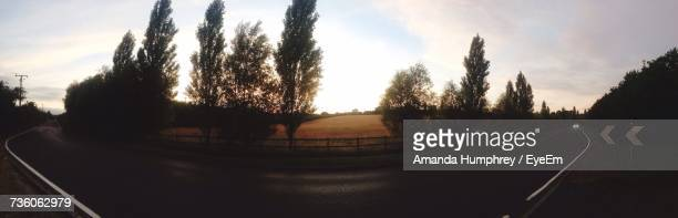 panoramic view of trees on road against sky - amanda humphrey stock pictures, royalty-free photos & images