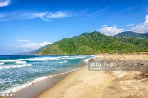 vista panorámica de playa tropical en el mar caribe. - paisajes de venezuela fotografías e imágenes de stock