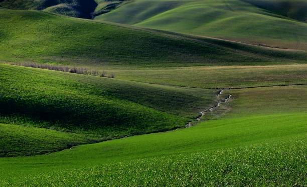 Panoramic View Of Tuscany Countryside In Spring