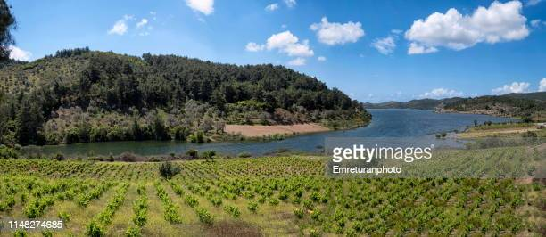 panoramic view of water reservoir of kavakdere dam in izmir province. - emreturanphoto stock pictures, royalty-free photos & images