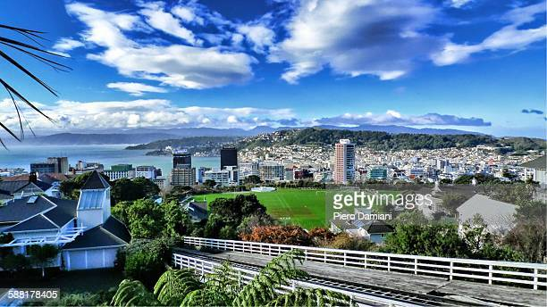 panoramic view of wellington - wellington new zealand stock photos and pictures