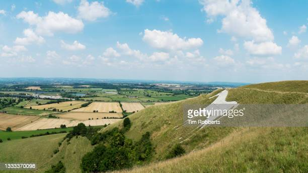 panoramic view of westbury white horse on a summer day. - horse stock pictures, royalty-free photos & images