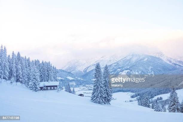 panoramic view on snow-capped valley and mountains - poolklimaat stockfoto's en -beelden