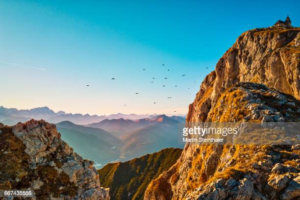 Panoramic view over mountains with flying jackdaws