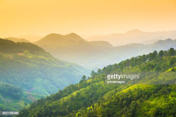 Panoramic view Sunrise and mist on mountain view at the north of thailand