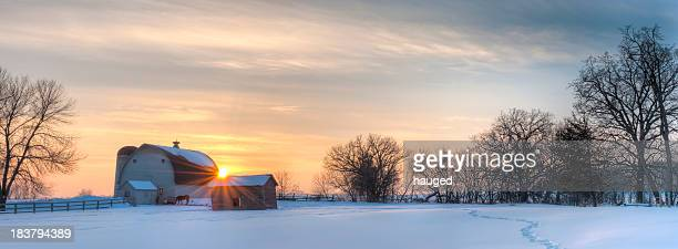 Panoramic winter landscape