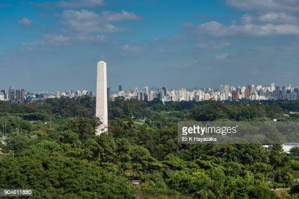 panoramica ibirapuera - ibirapuera park stock pictures, royalty-free photos & images