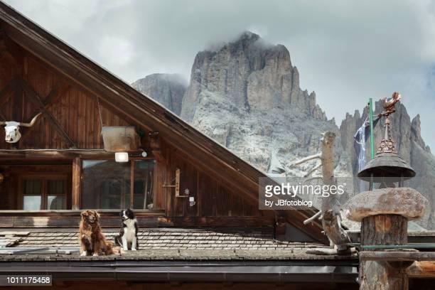 Panorma alpino italiano (Dolomiti)