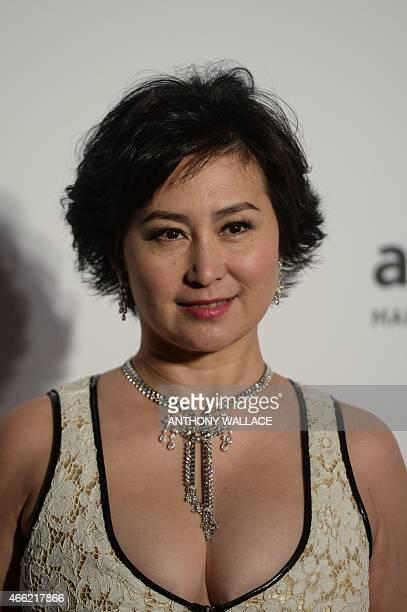 Pansy Ho daughter of Hong Kong and Macaubased businessman Stanley Ho poses on the red carpet during the 2015 amfAR Hong Kong gala at Shaw Studios in...