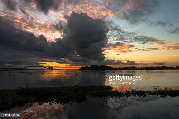 pantanal colors - pantanal wetlands stock photos and pictures