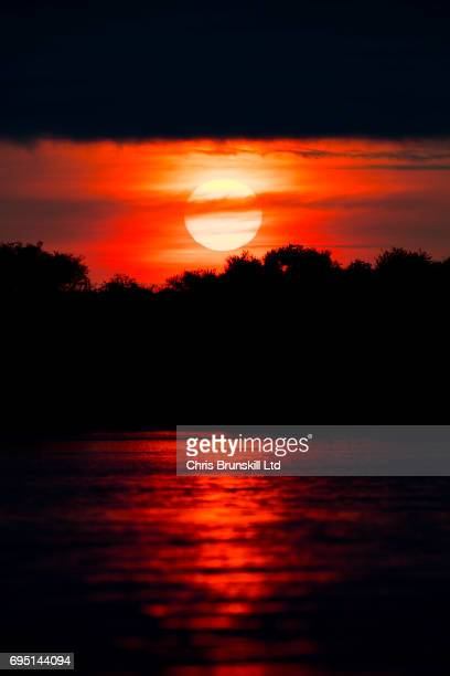 pantanal sunset - cuiaba river stock pictures, royalty-free photos & images