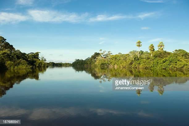 Pantano de Pantanal, Brasil