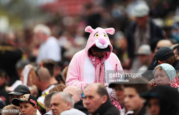 Panthers fan wears fancy dress during the round 25 NRL match between the Penrith Panthers and the St George Illawarra Dragons at Pepper Stadium on...