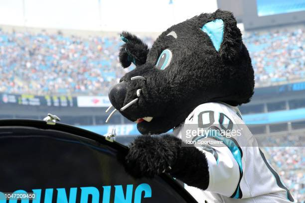 Panthers mascot Sir Purr during the game between the Carolina Panthers and the New York Giants on October 7, 2018 at Bank of America Stadium in...